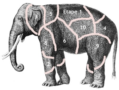 how-do-you-eat-an-elephant cut